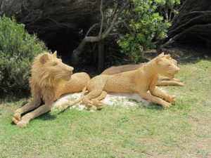 Australia - Sculpture by the Sea - Twine Lions