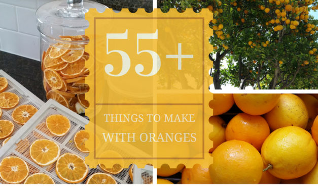 55+ Things to Make with Oranges-Roundup with Photos!