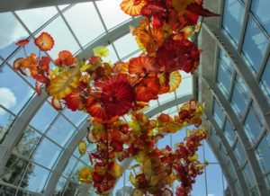 Seattle - Chihuly Garden & Glass Ceiling Glass