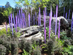 Seattle - Chihuly Garden & Glass Lavender Spikes