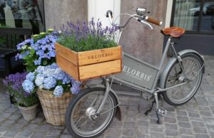 Copenhagen, Denmark Photo - Flower Filled Bicyle