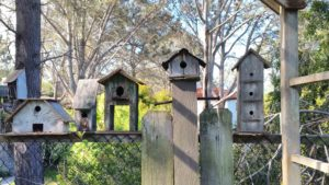 Marney Mahoney's Birdhouse Collection