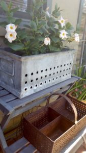 Marnie Mahoney's Del Mar Garden Collections - Metal boxes