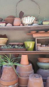 Marnie Mahoney's Del Mar Garden Collections - Pots with Tillandsia