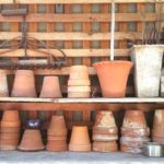 A Del Mar Gardener's Collections