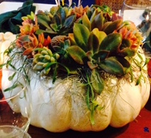 succulent-covered-pumpkin-centerpiece-closeup-2
