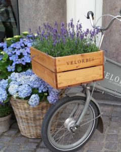 copenhagen-denmark-flower-filled-bicyle-copy